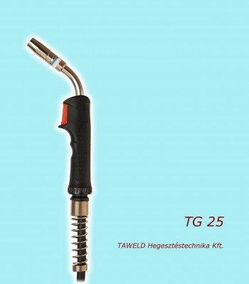 TG 25 welding torch